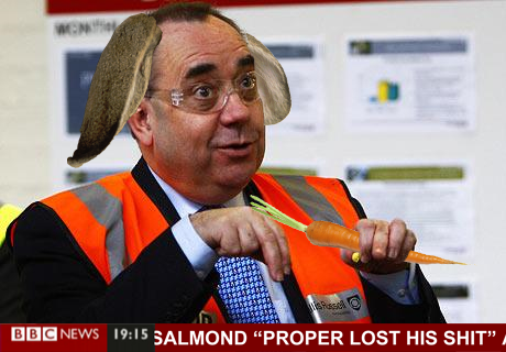 alex salmond rabbit