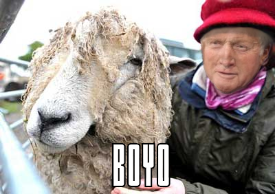 questionable time 10 david dimbleby sheep