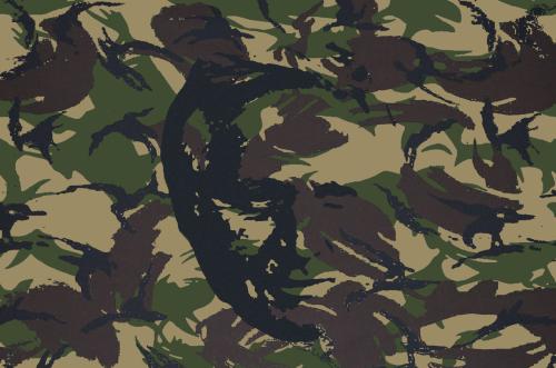 questionable time 48 davidi dimbleby camoflage
